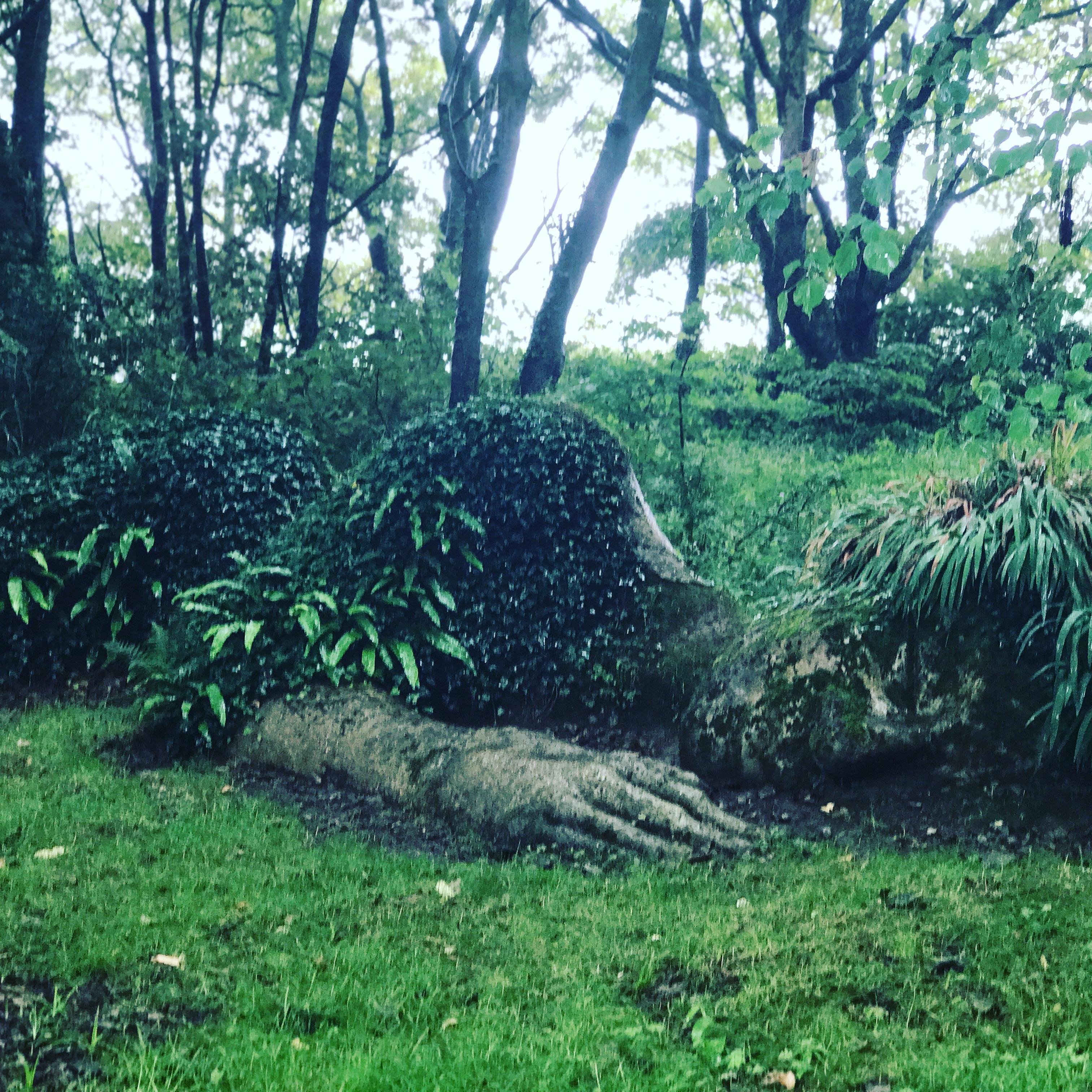 Kayte Nunn\'s 5 Favourite Gardens - Hachette Australia